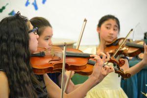 Spring Grove musicians